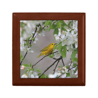 Yellow Warbler and Spring Blossoms Jewelry Box
