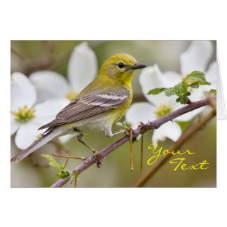 Yellow  Warbler - Any Occasion Card