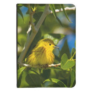 Yellow Warbler In Tree Near Augusta, Montana Kindle 4 Case