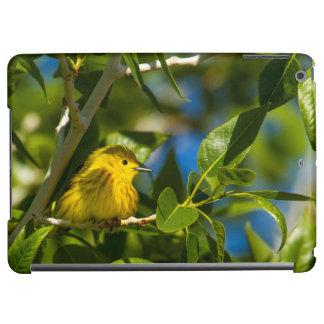 Yellow Warbler In Tree Near Augusta, Montana iPad Air Cover