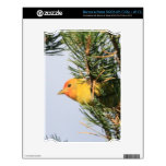 Yellow Warbler NOOK Decal