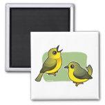 Yellow Warbler pair Fridge Magnets