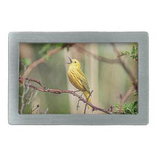 Yellow Warbler Singing Belt Buckle