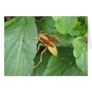 Yellow Wasp Straddling Leaves Card