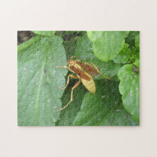 Yellow Wasp Straddling Leaves Puzzle