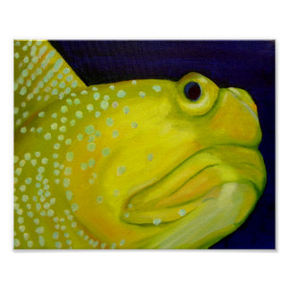 Yellow Watchman Goby Fish Poster
