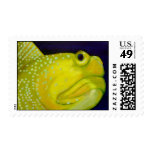 Yellow Watchman Goby Fish Stamp