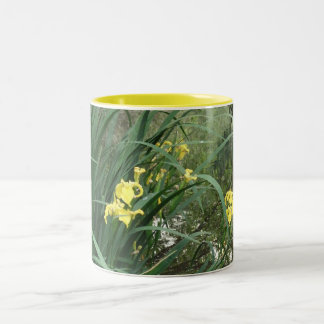 Yellow Water Iris Mug