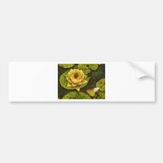 Yellow Water Lily Bumper Sticker
