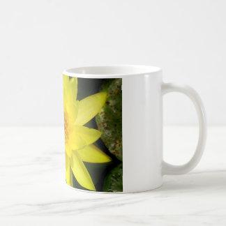 Yellow Water Lily Classic White Coffee Mug