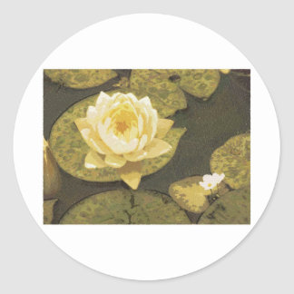 Yellow Water Lily Drawing Classic Round Sticker