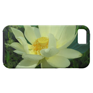 Yellow Water Lily iPhone 5 Case