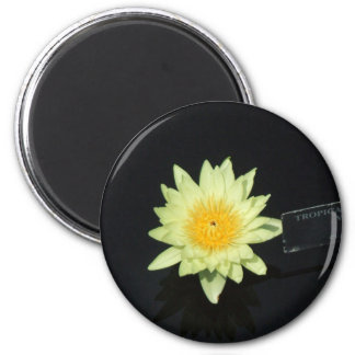 Yellow Water Lily Magnet