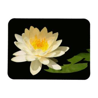 Yellow Waterlily Premium Magnet