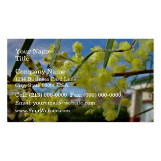 Yellow Wattle blossom against blue sky Double-Sided Standard Business Cards (Pack Of 100)