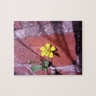Yellow Weed flower Puzzles