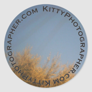 Yellow Whiskers, Yellow Leaves sticker