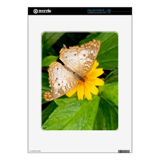 yellow white butterfly moth decal for iPad