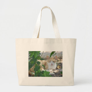 Yellow&White Cat in Nature Canvas Bag