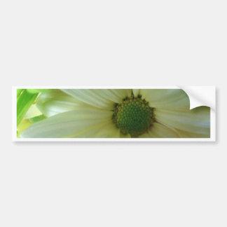 Yellow/White Daisy Bumper Sticker