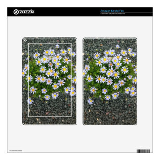 Yellow White Margarita Flowers with Grey Pebbles Decals For Kindle Fire