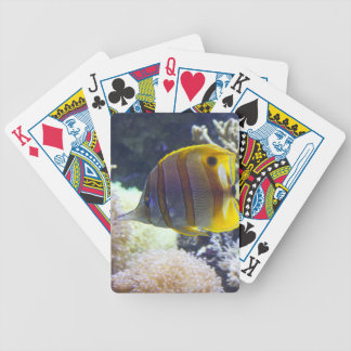 yellow & white Saltwater Copperband Butterflyfish Bicycle Playing Cards
