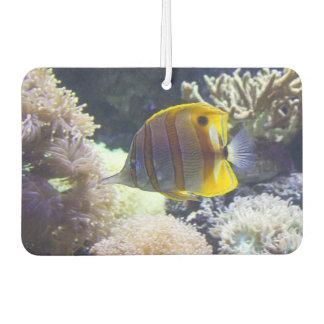 yellow & white Saltwater Copperband Butterflyfish Car Air Freshener