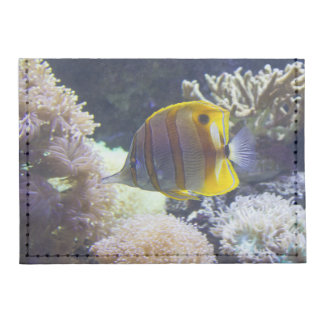 yellow & white Saltwater Copperband Butterflyfish Card Wallet