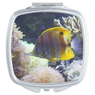 yellow & white Saltwater Copperband Butterflyfish Compact Mirror