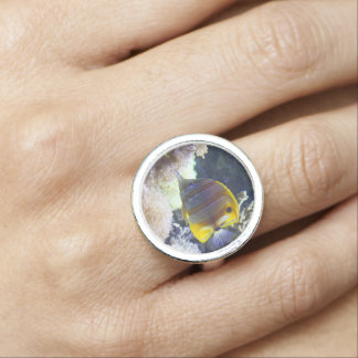 yellow & white Saltwater Copperband Butterflyfish Photo Ring