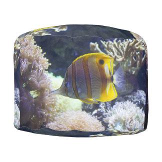 yellow & white Saltwater Copperband Butterflyfish Round Pouf