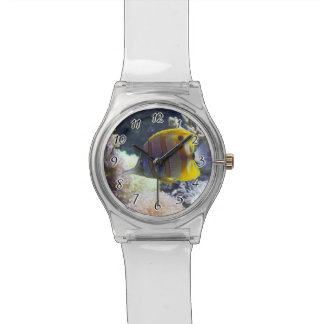 yellow & white Saltwater Copperband Butterflyfish Wristwatch