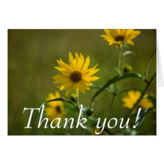 Yellow Wild Flower - Thank You Card