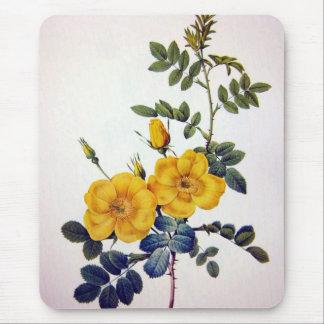 Yellow Wild Roses, Pierre Joseph Redouté Mouse Pad