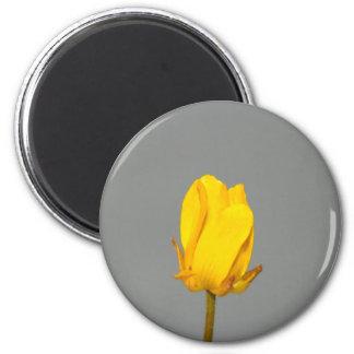Yellow Wildflower 2 Inch Round Magnet