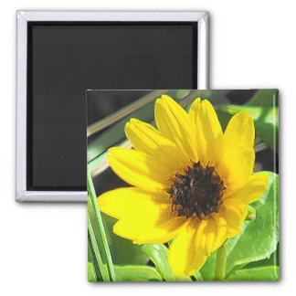 Yellow Wildflower 2 Inch Square Magnet