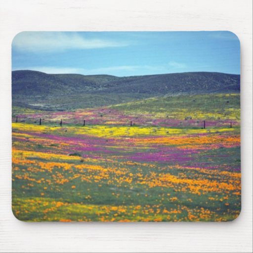 Yellow Wildflower field flowers Mouse Pad