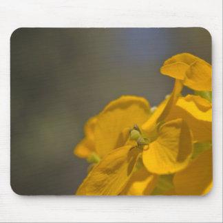 Yellow Wildflower Mousepad