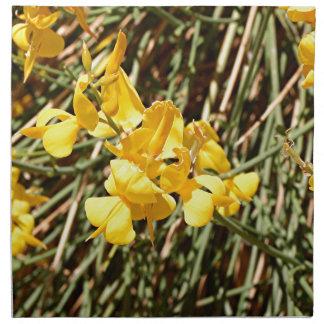 Yellow wildflowers in bloom, Utah, USA Napkin