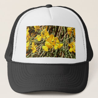 Yellow wildflowers in bloom, Utah, USA Trucker Hat