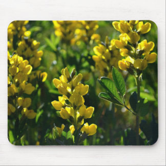 Yellow Wildflowers in the Mountains Mouse Pads