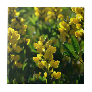 Yellow Wildflowers in the Mountains Tiles