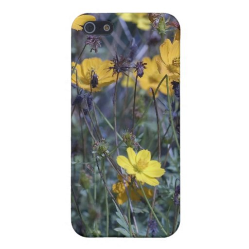 Yellow Wildflowers iPhone 5 Covers
