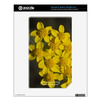Yellow Wildflowers Nook Color Decal