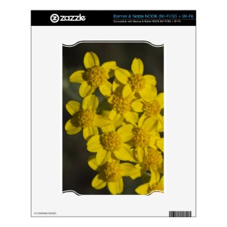 Yellow Wildflowers Nook Skins