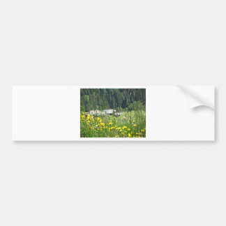 Yellow wildflowers on the meadow bumper sticker