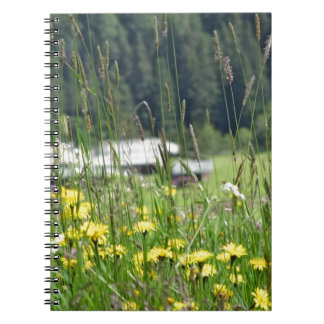 Yellow wildflowers on the meadow spiral notebook