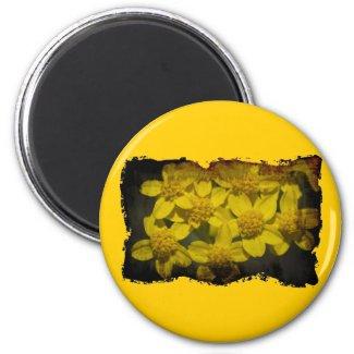 Yellow Wildflowers Refrigerator Magnets