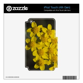 Yellow Wildflowers Skins For Ipod Touch 4g