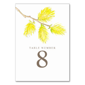 Yellow willow catkins watercolor art table numbers